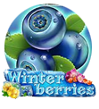 Winter Berries logo